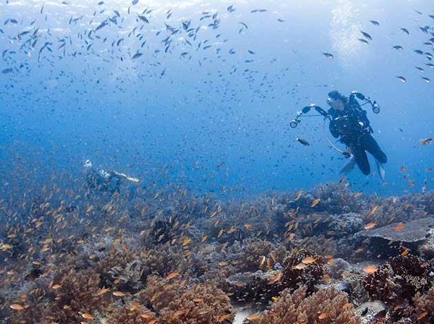 菲律賓-南萊特島 3